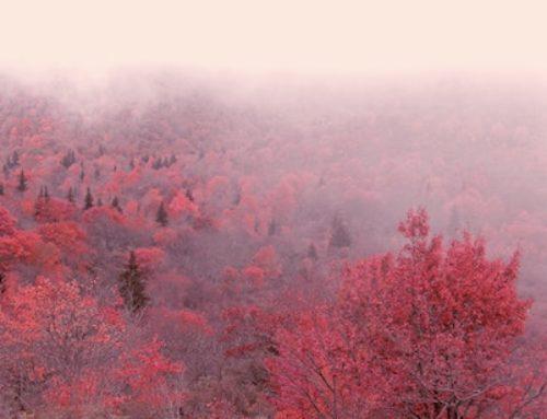 Herbst schenkt Zeit